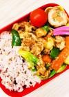 雑穀米と春キャベツの回鍋肉弁当☆