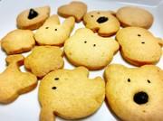 サクサク型抜きクッキーの写真