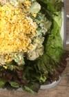 あみえびとブロッコリーのポテトサラダ