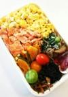 お弁当(5/8)鮭、玉子そぼろ弁当
