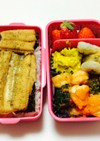 140、海苔穴子丼と海老チリ弁当♡