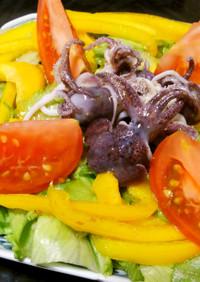 ミミイカと彩り野菜のサラダ