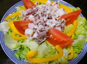 ヒイカと彩り野菜のサラダ