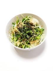 新玉ねぎと豆苗deサラダの写真
