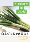 葉タマネギの辛味噌 (大量消費)