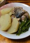 簡単!かぶと鯖の水煮缶の煮物