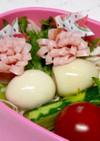 サラダ弁当に♡ピンチョス