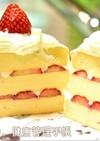 犬ケーキ 苺のショートケーキ風