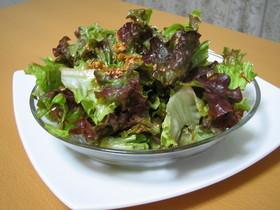 サニーレタスの☆韓国風もりもりサラダ