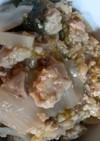 鶏のミンチと白菜のレモン炒め煮【男飯】