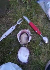 キャンプでバーナー焼き牡蠣