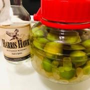 ウイスキー梅酒(旨くて飲み干すヤバイ酒)の写真