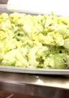 簡単キウイと白菜サラダ