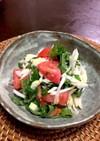 トマトと白ネギのあっさりサラダ