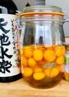 有機芋焼酎で健康金柑酒