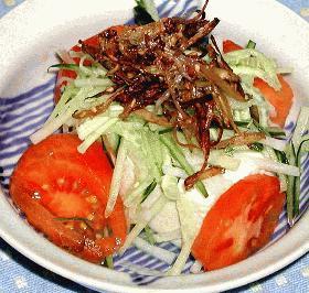 カリカリ豆腐サラダ
