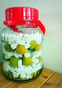 冷凍梅で❄️梅シロップ