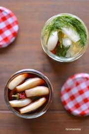 らっきょうの醤油漬けとハーブ甘酢漬けの写真