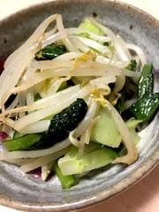 超簡単☆小松菜ともやしの炒め物の写真