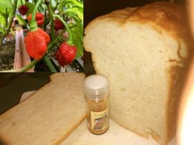 世界一辛いとうがらしキャロライナ 食パン