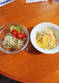 春雨サラダとアルファルファのサラダです