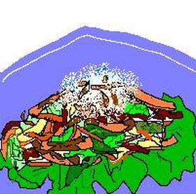 チビ野菜とカリカリ鶏皮のおろし添え
