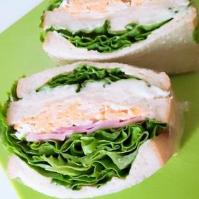 ボリュームたっぷり沼サンドイッチ