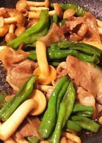 簡単★しし唐芥子と豚肉の甘辛炒め
