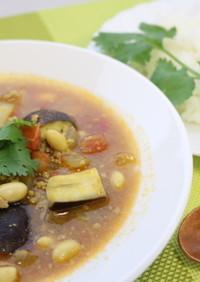 夏野菜たっぷり!トマトスープカレー