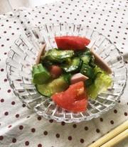 きゅうりとトマトのさっぱりサラダ♪の写真