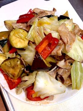 お肉と野菜のキムチの素炒め
