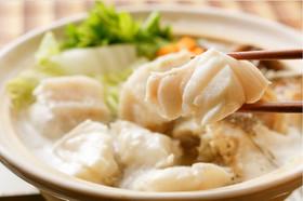 幻の高級魚!スープで食べるクエ鍋(よか魚