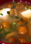 【超簡単】なめことお豆腐のお味噌汁