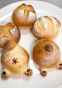 蜂蜜大好きくまさんのおしりパン*低温熟成