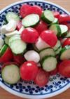 きゅうりとトマトのモッツァレラサラダ