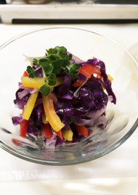 綺麗な常備菜♡紫キャベツのレモンマリネ風
