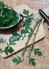 よもぎの葉でジェノベーゼオイル