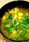 トウモロコシと豆苗*お味噌汁
