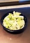 レタスと塩昆布のシャカシャカサラダ