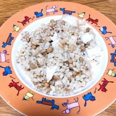 ダイエットに♪もち麦で納豆炒飯!
