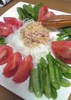 初夏の野菜のコブツナサラダ