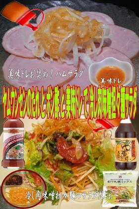 美味ドレとヤムポン酢で冷し肉味噌担々麺S