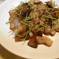 豆苗と豚肉の豆鼓醤炒め