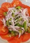 紫玉ねぎとゴーヤサラダ