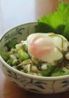 半熟卵とたたききゅうりと長芋のめかぶ和え