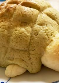カメのメロンパン(抹茶味)