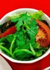 金沢春菊サラダ