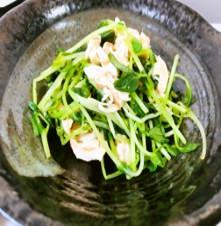 豆苗とささみの梅サラダ
