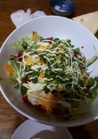 スクランブルエッグのせサラダ