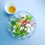 豆苗とみょうがのサラダの写真